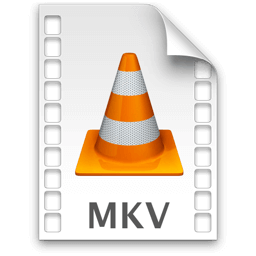 VideoLAN VLC media player WEBM icon